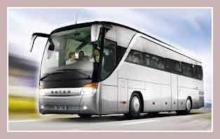 автобусы Турции