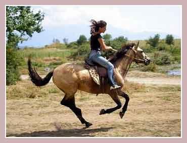 Верховая езда в Паттайе