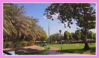 Парк Jumeirah Beach Park