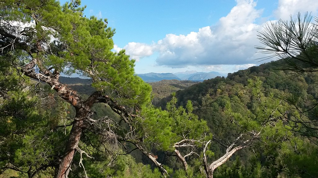 Достопримечательности Сочи: Орлиные скалы